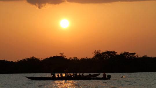 Sucumbio Amazon