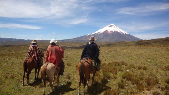 Andes uitzicht