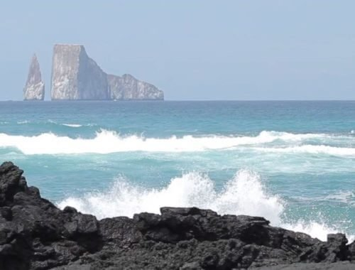 Galapagos sea