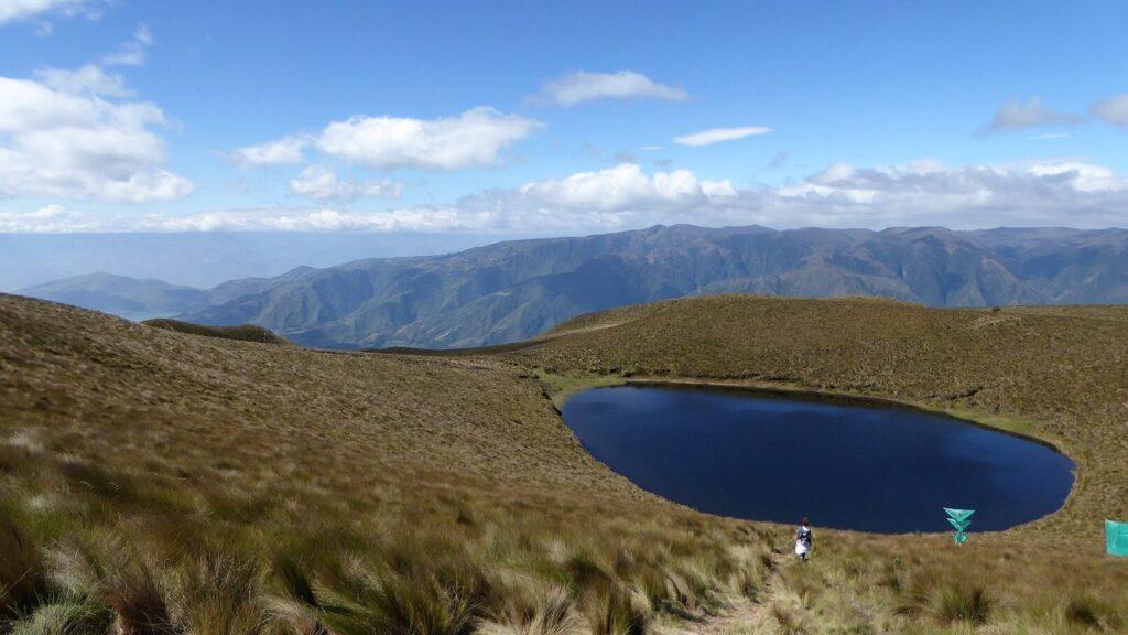 Cubilche - Ecuador
