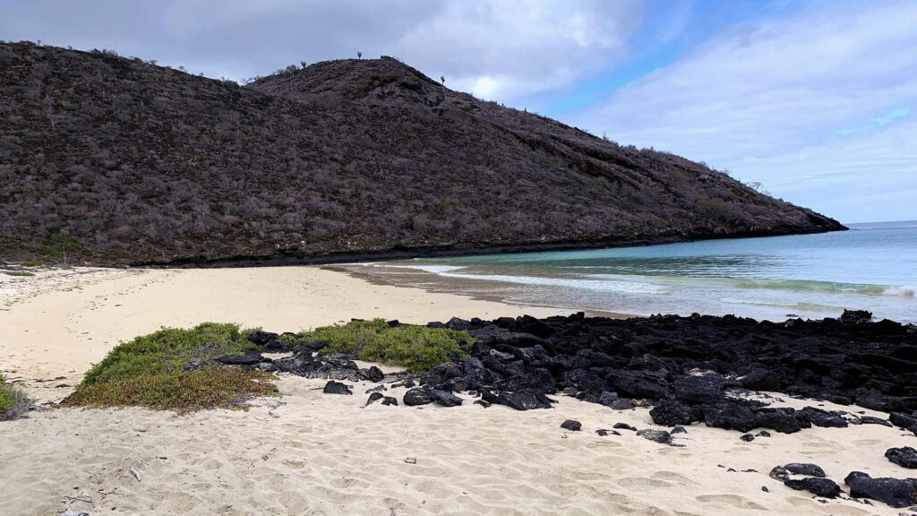 beach Floreana