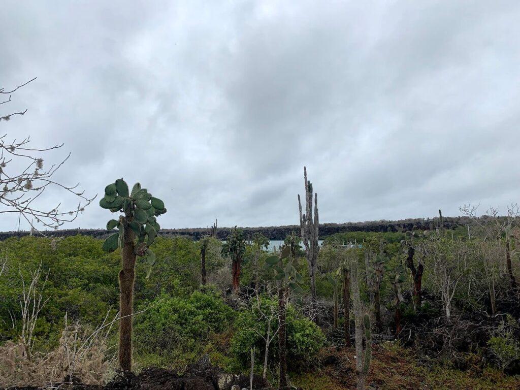 Hiking Galappagos