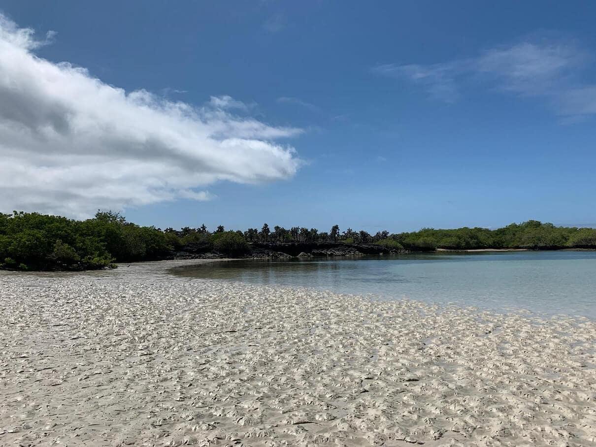 Tortuga Bay - Galapagos Islands