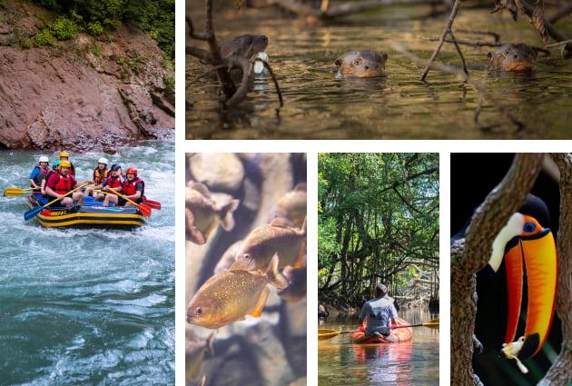 travel to the Amazon Ecuador