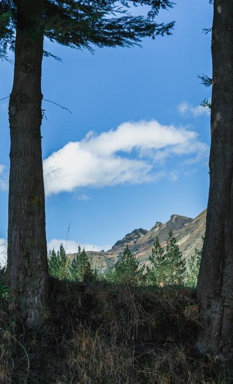 Andes in Ecuador