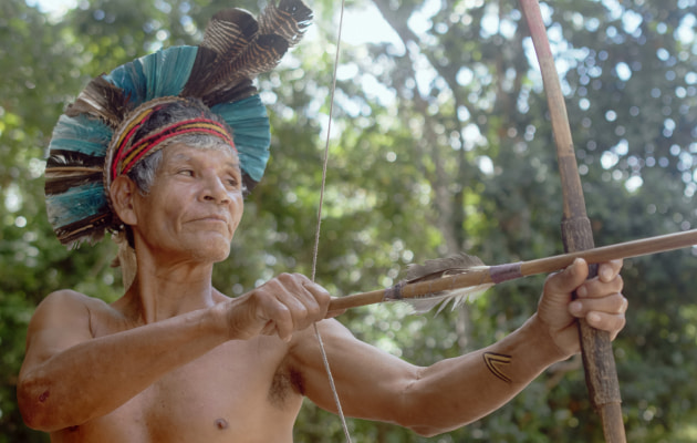 Indigenous Amazonian cultures